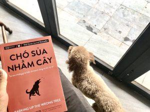 [Review Sách] Chó Sủa Nhầm Cây của Eric Barker: Điều gì làm nên một cuộc đời thành công?